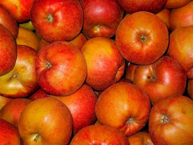 Delicious recipe for baked apples full of goodness