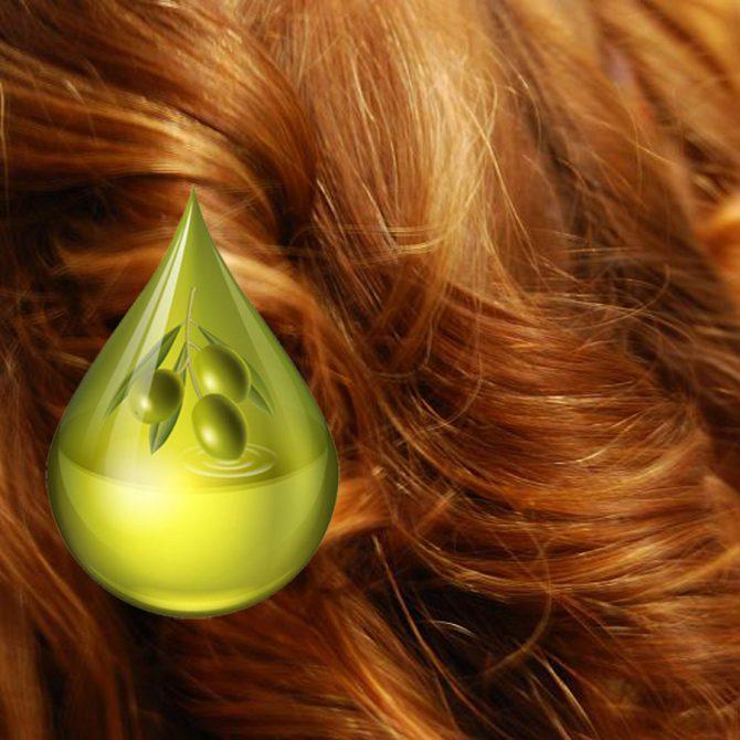 Resultado de imagem para olive oil in hair