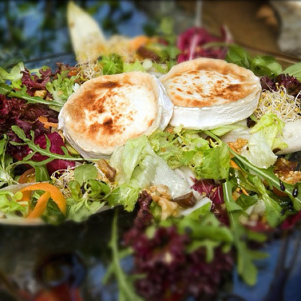 Warm salad with goats cheese and wild mushrooms