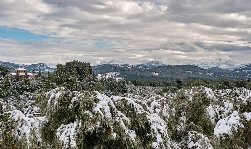 Sierra de Mariola natural Park under snow